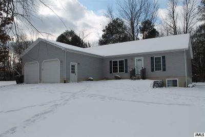 Jackson Single Family Home For Sale: 3790 Flansburg