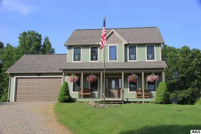 Rives Junction MI Single Family Home For Sale: $319,500