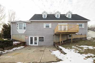 Munith Single Family Home For Sale: 8452 Dunn Rd