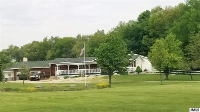 Addison MI Single Family Home For Sale: $259,900