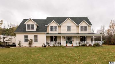 Onsted MI Single Family Home For Sale: $429,900