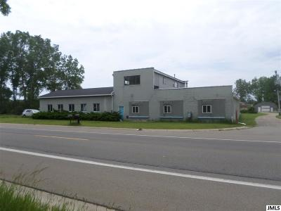 Jackson MI Commercial/Industrial For Sale: $369,000