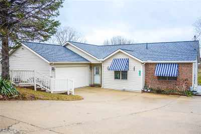 Cement City MI Single Family Home For Sale: $324,000