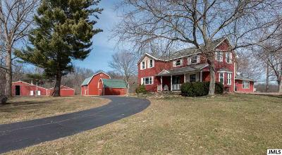 Homer MI Single Family Home For Sale: $399,900