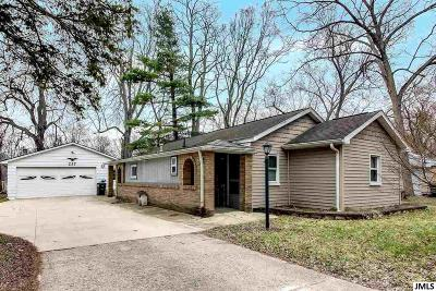 Michigan Center Single Family Home For Sale: 237 Holmes Ave