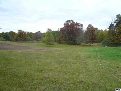 Grass Lake MI Residential Lots & Land Contingent - Financing: $81,000