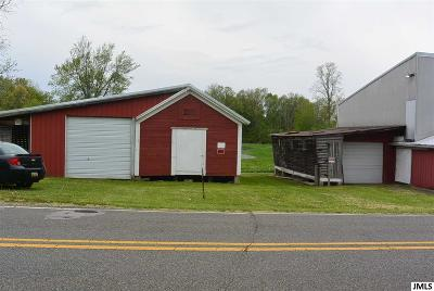 Parma MI Residential Lots & Land For Sale: $164,900