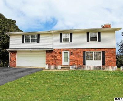 Parma Single Family Home For Sale: 4172 Brown Rd