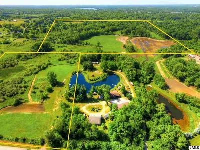 Jackson County Commercial Lots & Land For Sale: V/L Michigan Ave