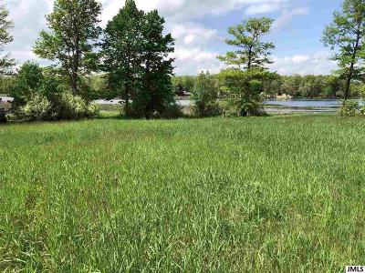 Residential Lots & Land For Sale: 11991 Swan View Dr