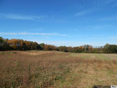 Rives Junction MI Residential Lots & Land For Sale: $40,000