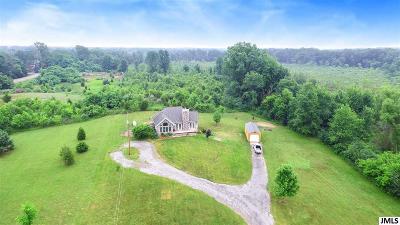 Clarklake Single Family Home Contingent - Financing: 9255 Gillette