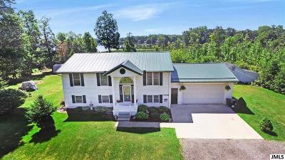 Jackson MI Single Family Home For Sale: $335,000