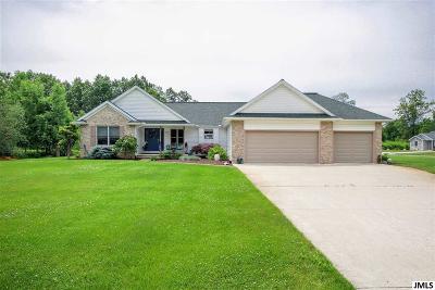 Jackson MI Single Family Home For Sale: $269,900