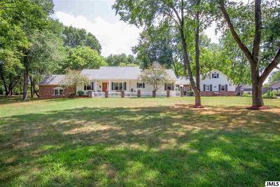 Jackson Single Family Home For Sale: 6178 Ackerson Lake Rd