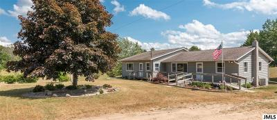 Munith Single Family Home For Sale: 10627 Hannewald Rd