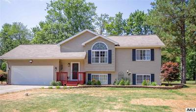 Pleasant Lake Single Family Home Contingent - Financing: 280 Dolores Dr