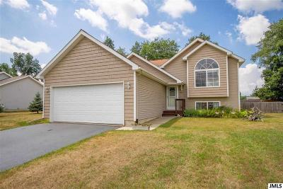 Single Family Home For Sale: 1316 Catsyl