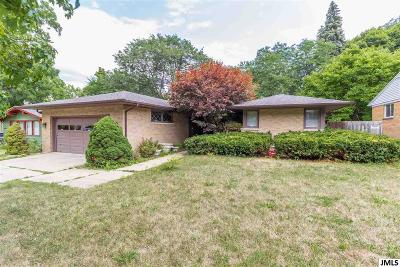 Lansing Single Family Home For Sale: 419 S Holmes