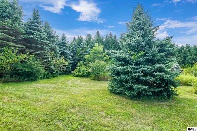 Spring Arbor MI Residential Lots & Land For Sale: $100,000