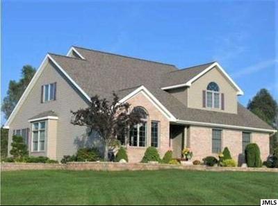 Jackson Single Family Home For Sale: 6844 Napoleon Rd