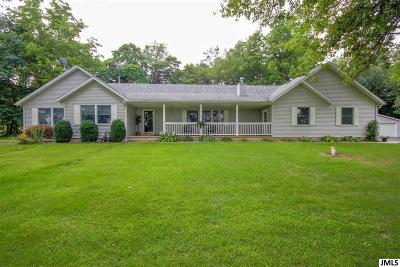 Rives Junction MI Single Family Home For Sale: $289,900