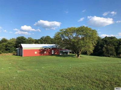 Jackson MI Residential Lots & Land For Sale: $115,000