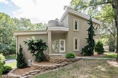 Grass Lake Single Family Home For Sale: 7810 Ann Arbor Rd