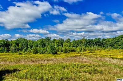 Jackson MI Residential Lots & Land For Sale: $240,000
