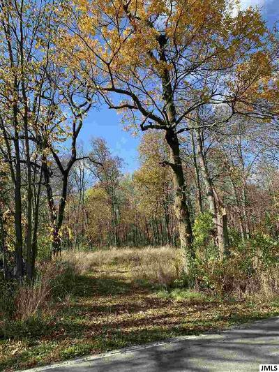 Jackson MI Residential Lots & Land For Sale: $99,000