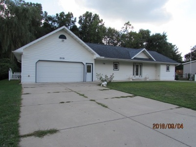 Michigan Center Single Family Home Contingent - Financing: 319 Broad St