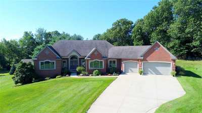 Jackson MI Single Family Home For Sale: $539,900
