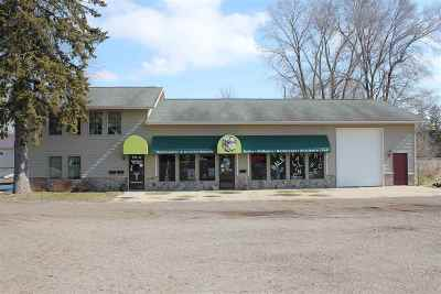 Commercial/Industrial For Sale: 119 Fifth St