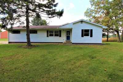 Onondaga MI Single Family Home For Sale: $245,000