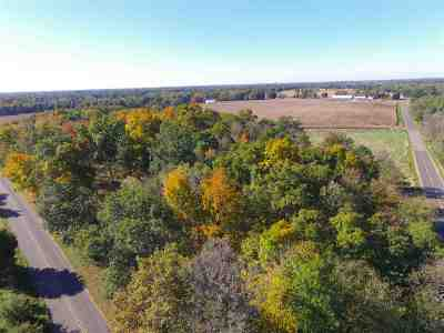 Grass Lake MI Residential Lots & Land For Sale: $350,000
