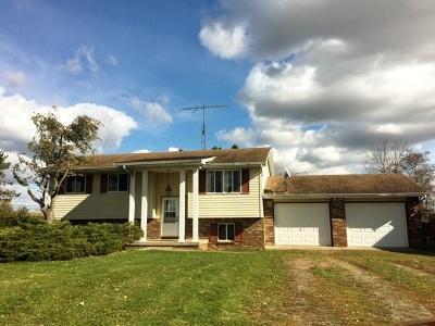 Parma Single Family Home Contingent - Financing: 2817 Muma Rd