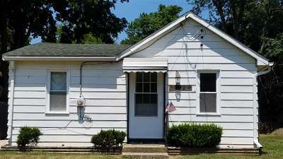 Michigan Center Single Family Home For Sale: 342 Broad St