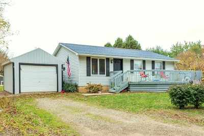 Cement City MI Single Family Home For Sale: $126,900