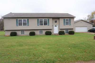 Rives Junction MI Single Family Home For Sale: $225,000