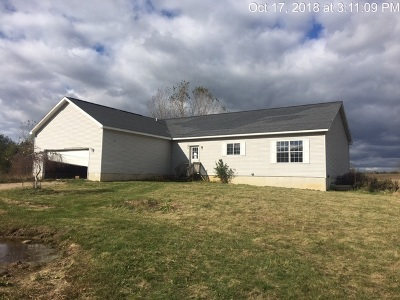 Onondaga Single Family Home For Sale: 4736 Olds Rd