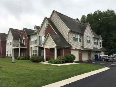 Ann Arbor Condo/Townhouse Contingent: 951 Addington Ln