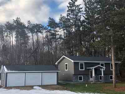 Hillsdale County Single Family Home For Sale: 11096 S Jackson Rd
