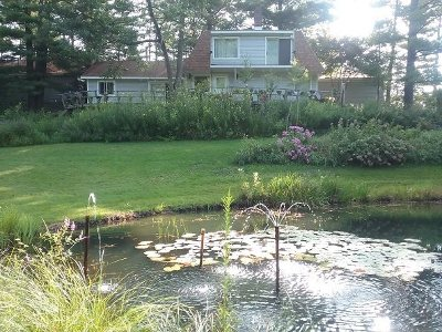 Grass Lake MI Single Family Home For Sale: $356,000