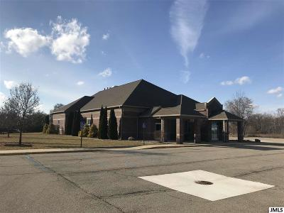 Jackson County Commercial/Industrial For Sale: 4400 Ann Arbor Rd