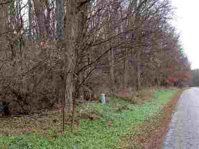 Stockbridge MI Residential Lots & Land For Sale: $194,000