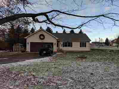 Grass Lake Single Family Home For Sale: 948 E Michigan Ave