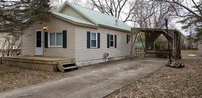 Lenawee County Single Family Home For Sale: 319 Peninsular