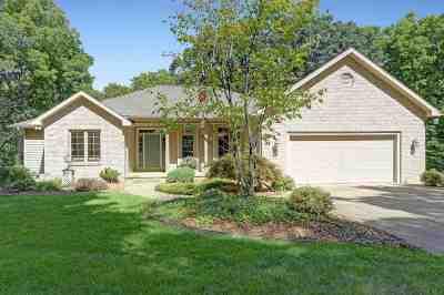 Horton MI Single Family Home For Sale: $349,000