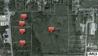 Grass Lake MI Residential Lots & Land For Sale: $245,000