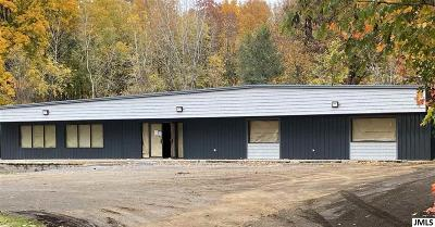 Jackson County Commercial/Industrial For Sale: 4200 Spring Arbor Rd